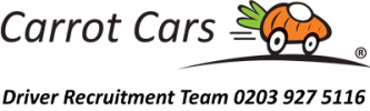 Carrot Cars Drivers